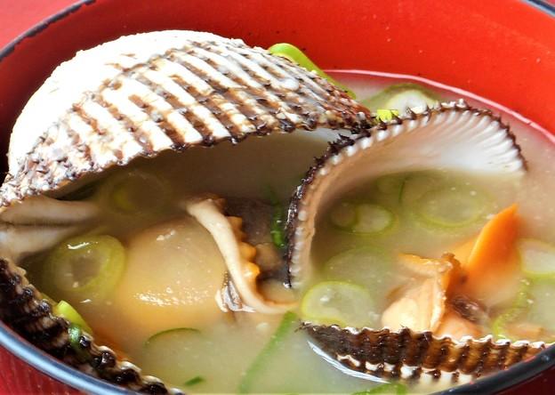 年の瀬の サルボウガイの お味噌汁
