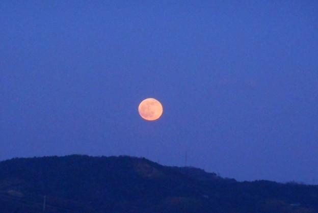 年の瀬のオレンジ色の満月@瑠璃山@今年最後の満月