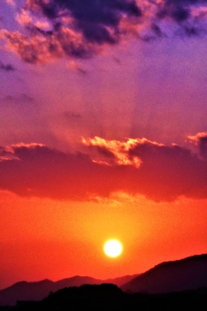 Photos: 早春の夕陽@浄土寺山山麓21.1.14