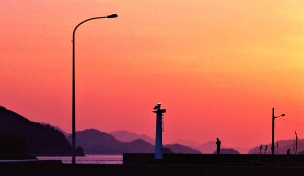 新春の釣り客たち@週末の瀬戸内海21.1.16