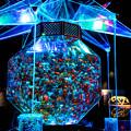 写真: Art aquarium (2)