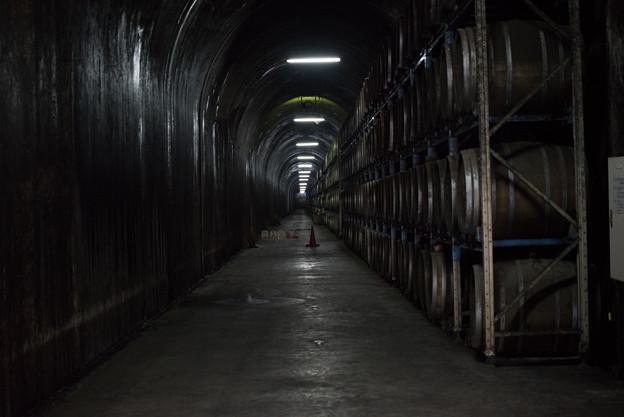 トンネルで熟成中 3