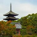 Photos: 京都 初秋 5