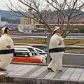 Photos: スモウラン3