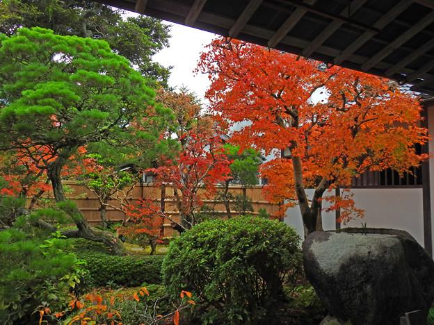 03庭園紅葉