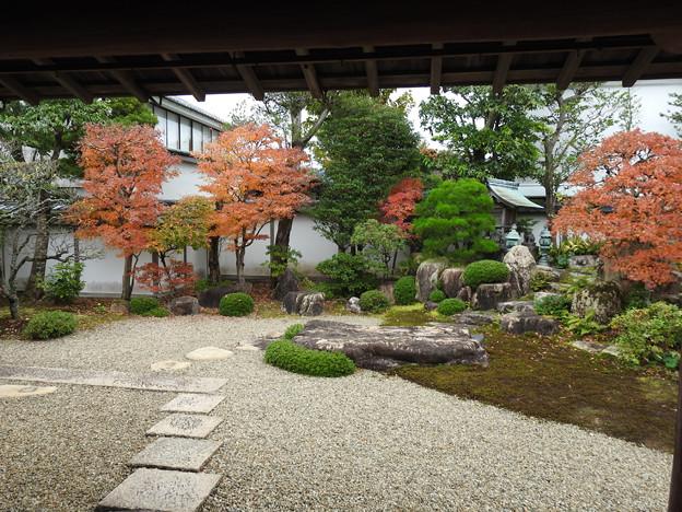 04庭園紅葉