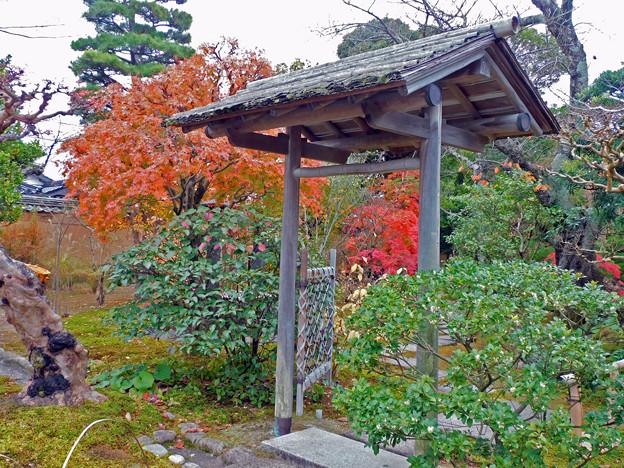 06庭園紅葉