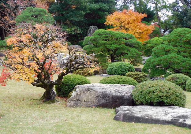 07庭園紅葉