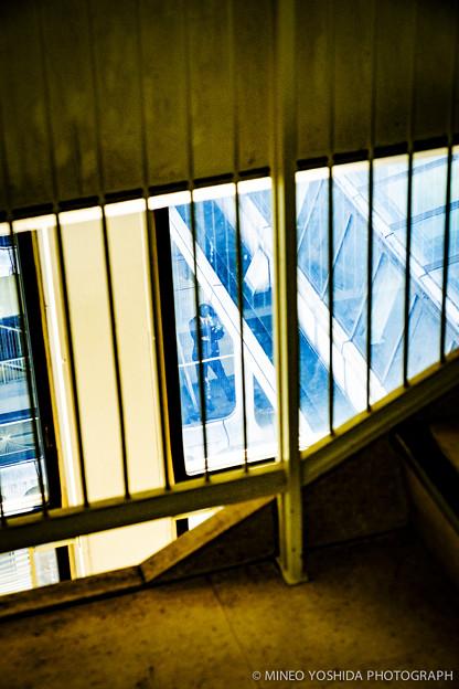 TOKYO COLOR CHROME #016