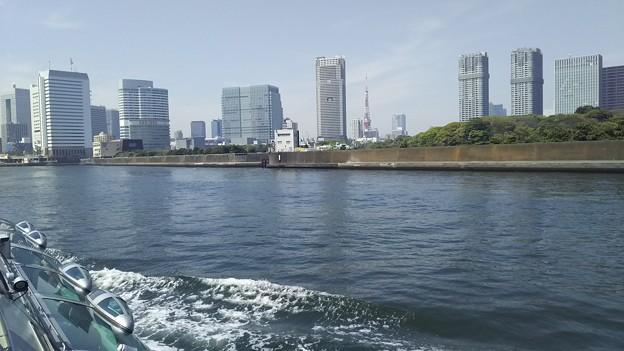 デッキから東京タワー発見