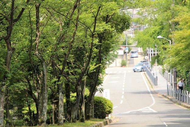 大津歴史博物館に続く坂