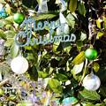 Photos: Merry Christmas_001