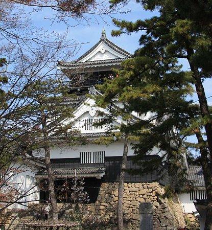okazakizyou sakuramaturi-210328-18