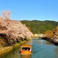 川の流れに春満喫