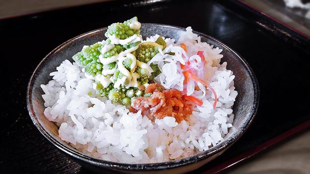 だいこん ( 成増 or 練馬区旭町 ) ご飯 ( 定食 )       2020/01/11