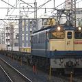 写真: ef65-1079-20081216