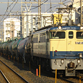 写真: ef65-1122-20081216
