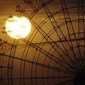 写真: 夕日と観覧車