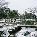写真: 兼六園冬景