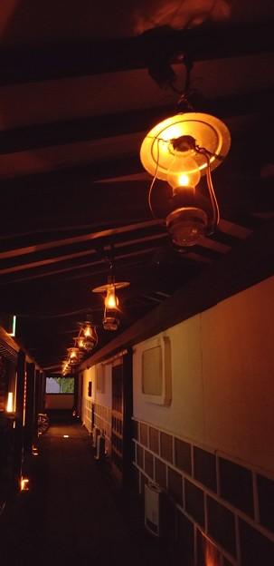 写真: ランプの宿