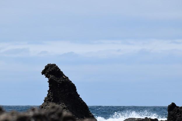 写真: ゴジラ現れる