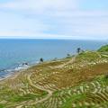 美しき日本の風景 白米千枚棚田
