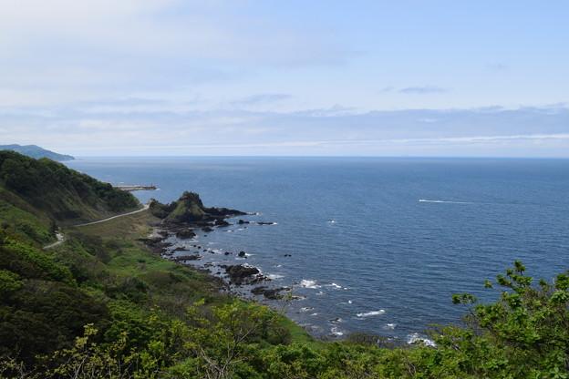 写真: 能登椿展望台からの眺望