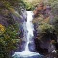 写真: 昇仙峡、仙娥滝