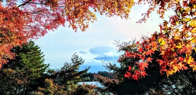 Photos: 紅葉富士