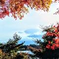 写真: 紅葉富士
