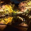 瀬戸岩屋堂の紅葉