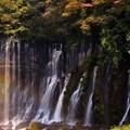 Photos: 紅葉と虹の滝