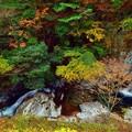 2つの滝に彩り色々な紅葉を添えて