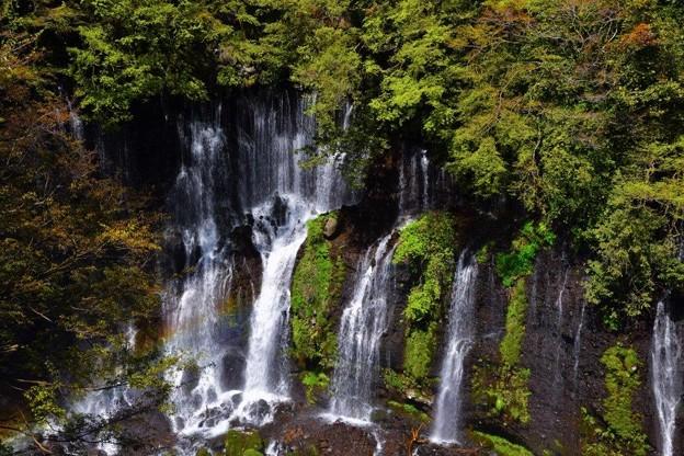 白糸の滝・春編