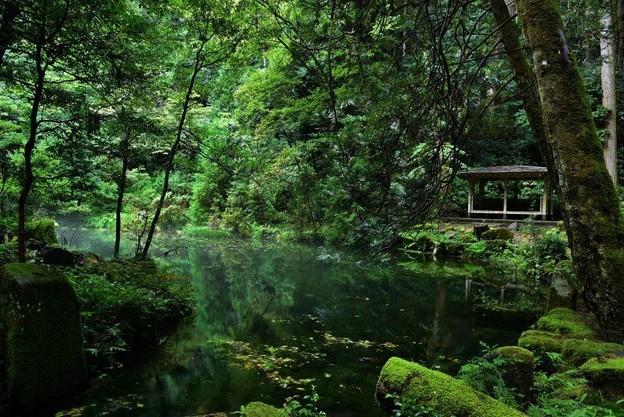 赤蔵山の御手洗池