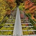 畑薙大吊り橋