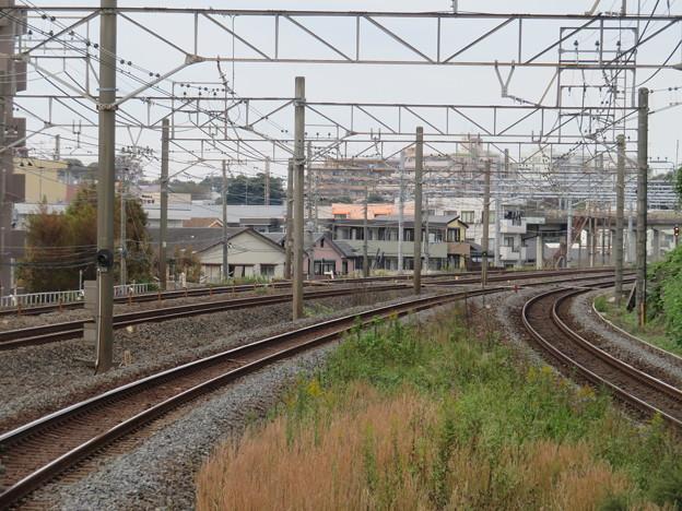 新松戸 撮影地