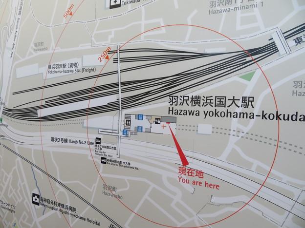 羽沢横浜国大駅・JR貨物横浜羽沢駅