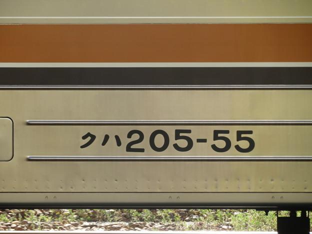 205系M31編成 (2号車)