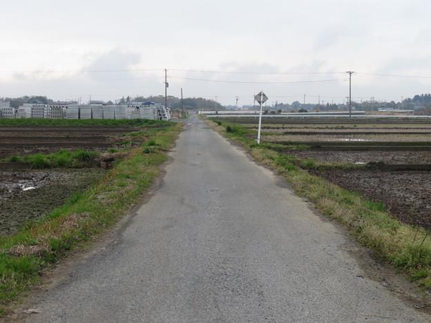 千葉県山武市蓮沼