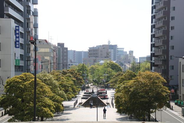 【大都会千葉】千葉市中央区新宿