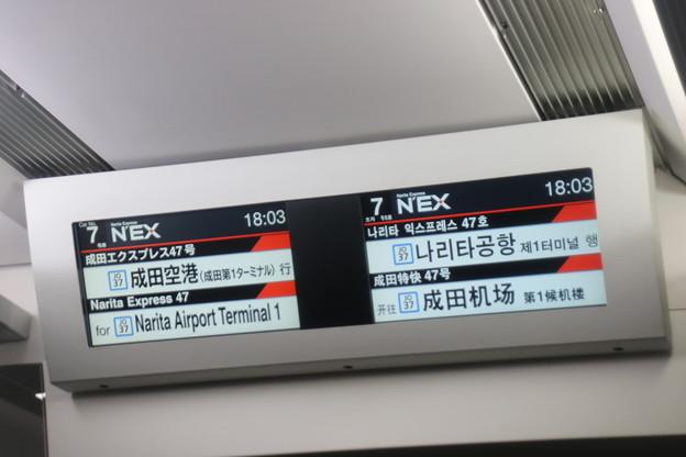 2020.6.19 2047M: Ne001+Ne004