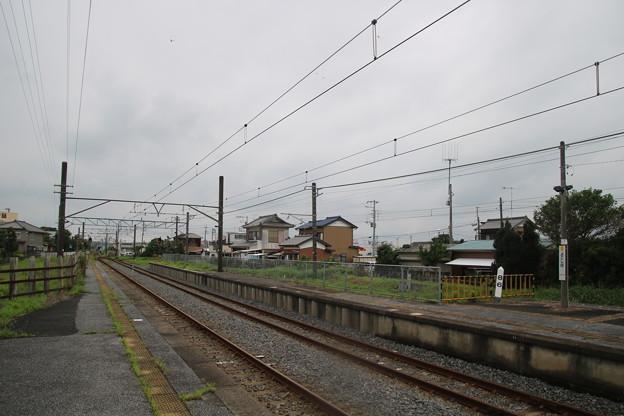 IMG_2733