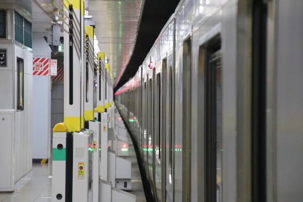 Photos: 成田空港駅 E217系とホーム柵の隙間
