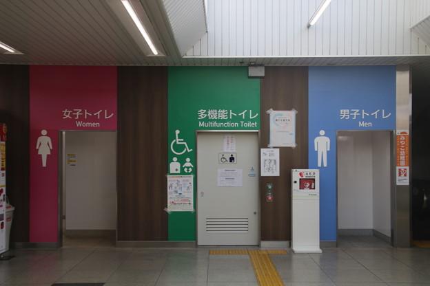 IMG_4227