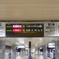IMG_9293