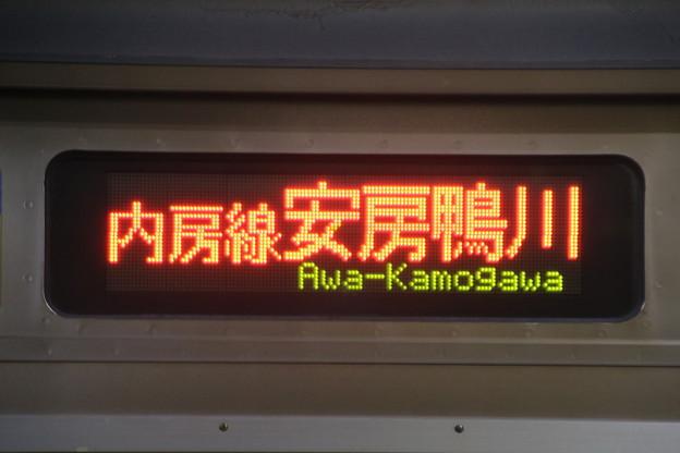 209系【内房線|安房鴨川】