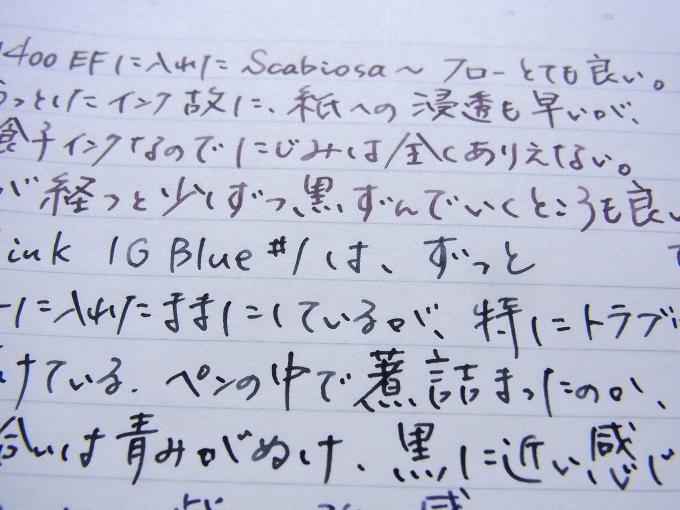 ScabiosaとIG Blue #1