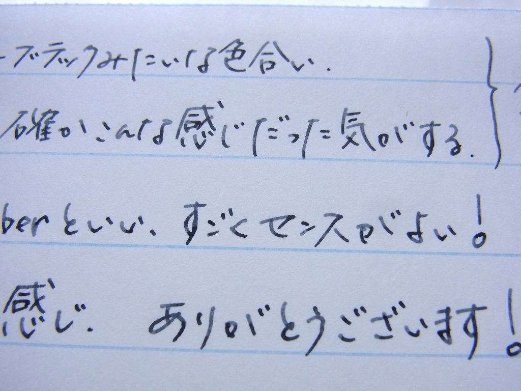 Cometを入れたプレピー 0.3mmで榛原蛇腹便箋に落書きの図(拡大)