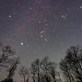 Photos: まさに冬の星空!
